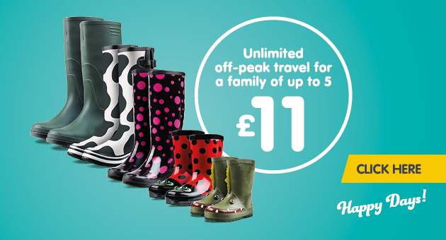 Family Ticket - Wellies